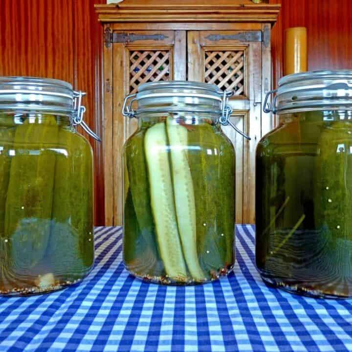 Freezer Pickles Recipe